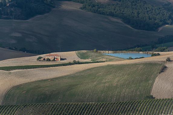 La campagne de Montalcino ©Luc Teper