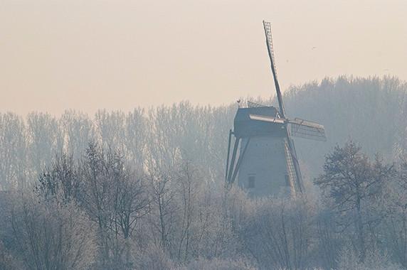 Le moulin à vent de Damme © Luc Teper
