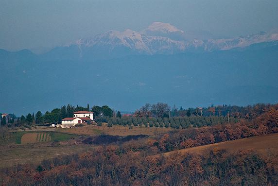 Sur la route de San Gimignano © Luc Teper