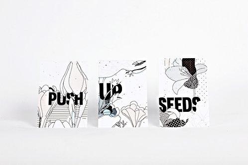 Kartenset aus Samenpapier - Regi Müller