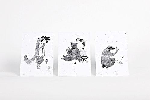 Kartenset aus Samenpapier - Nina Egli