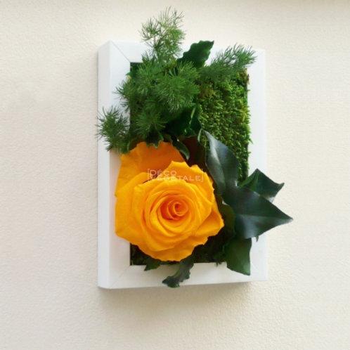 Sweet Heart (Rose - gelb)