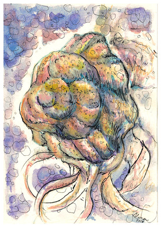 The Collective Unconscious: Mollusk