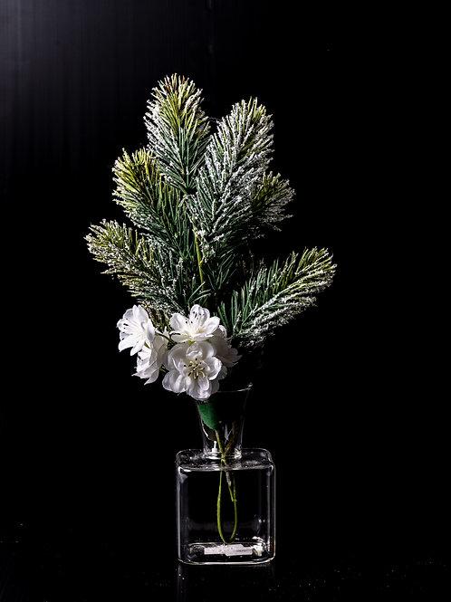 Vasetto con pino natalizio