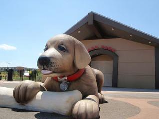 Best Dog Parks in Henderson, NV