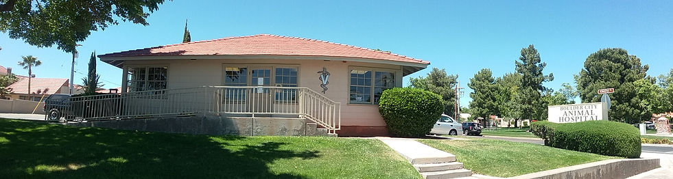 Boulder City Animal Hospital, Boulder City, Nevada