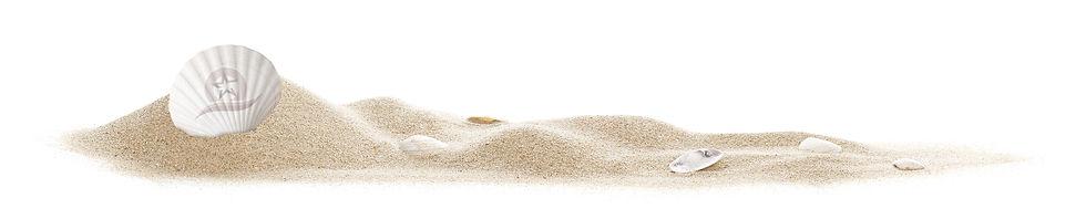 sand and seashells.jpg