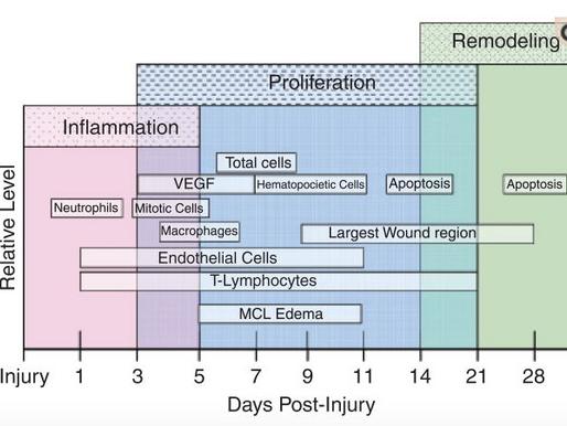 El uso del plasma rico en plaquetas (PRP) ¿Cuándo, como, donde, en las lesiones deportivas