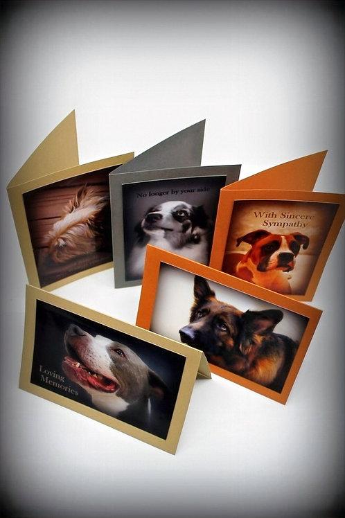 Dog Sympathy Cards Assorted (set of 5)