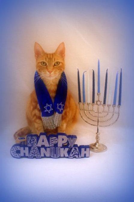 Hanukkah Card (Set of 5)