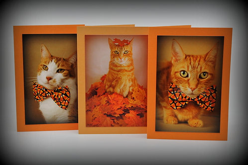 Halloween Blank assorted (set of 3)
