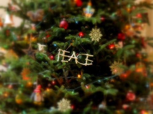 Christmas Card (set of 5)