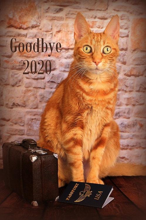 Good Bye 2020 (set of 5)