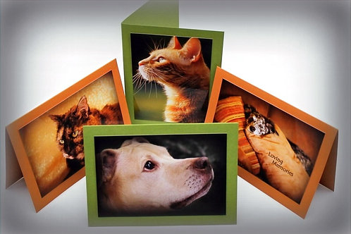 Pet Sympathy Cards Assorted (Set of 4)