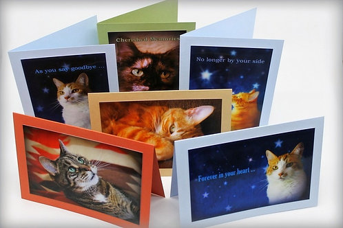 Cat Sympathy Cards (Set of 6)