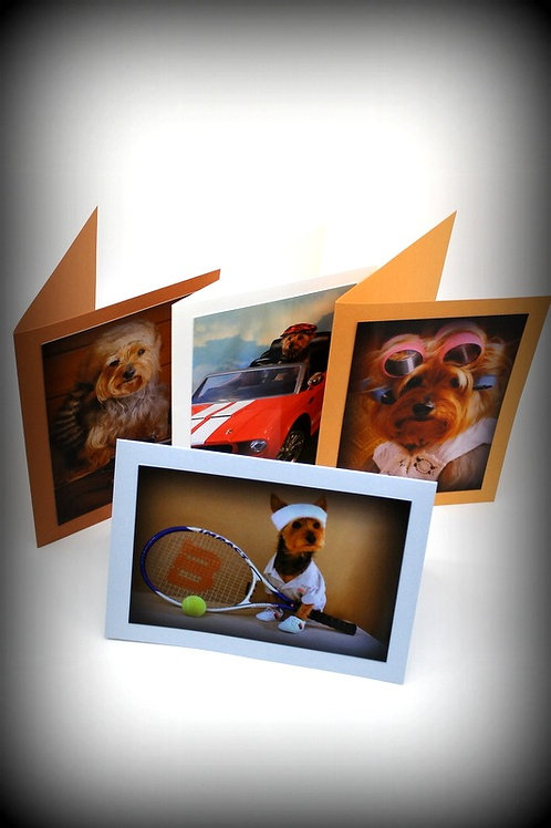 Fun Yorkie Note Cards  (Set of 4)