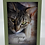 Thumbnail: Cat Sympathy Cards Assorted (set of 3)