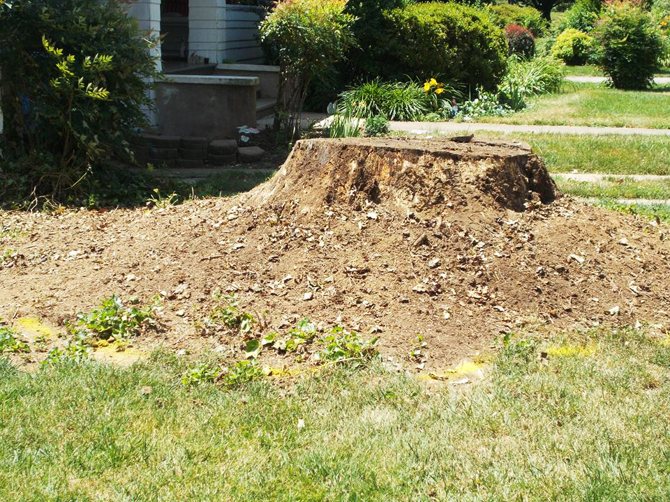 Pebble Brook Landscaping Roanoke VA 001.jpg