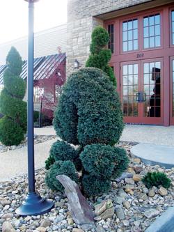 Landscaping-Christiansburg-VA-7.jpg