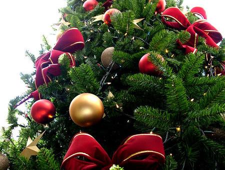 Архиерейская Рождественская ёлка в Майкопе пройдёт 8 января