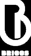 Briggs logo white 3.png