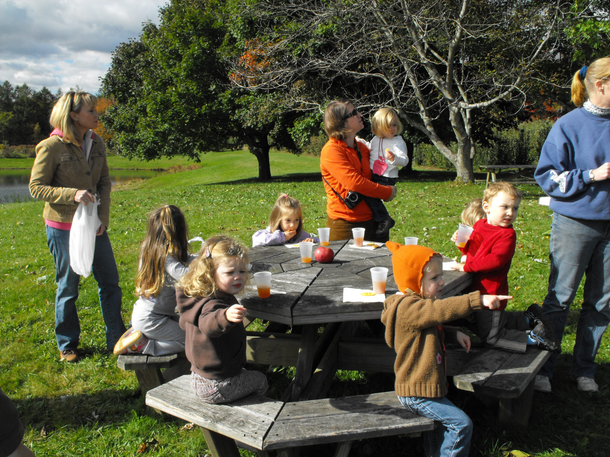 Field trip: Apple Orchard