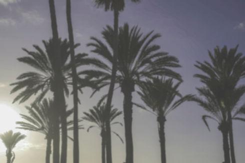 blurred background.jpg