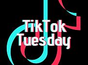 TikTokTuesday-1.png