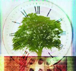 Ayurveda Is More Than A Dosha Quiz!   Ayurveda Online