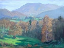 from the ridge, Montgaillard