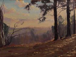 sundown on Finchampstead ridges earlier...