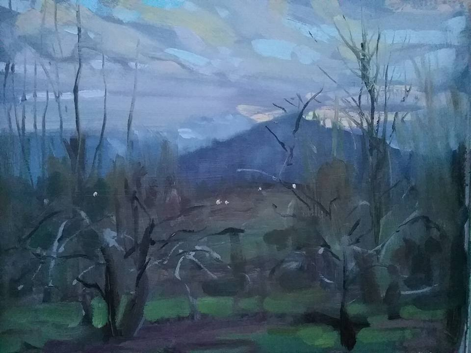 Rapid twilight Cagire