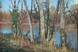 Une étude des arbres, Riviere