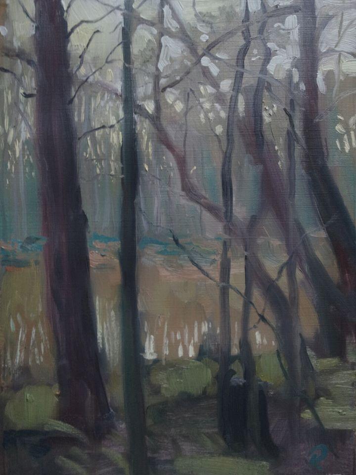 Swampy twighlight