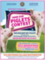 OBV Piglet Contest 2020.jpg