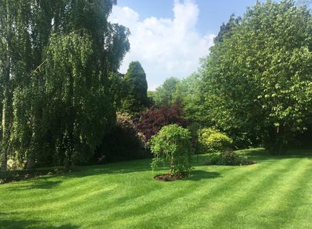 Marchington Open Gardens 2019    22nd–23rd June 2019, 11 am – 5 pm
