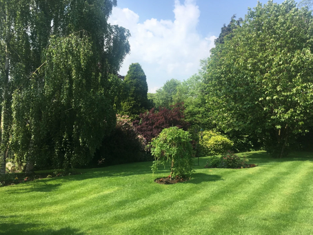 Marchington Open Gardens 2019    22nd–23rd June 2019, 11 am – 5 pm
