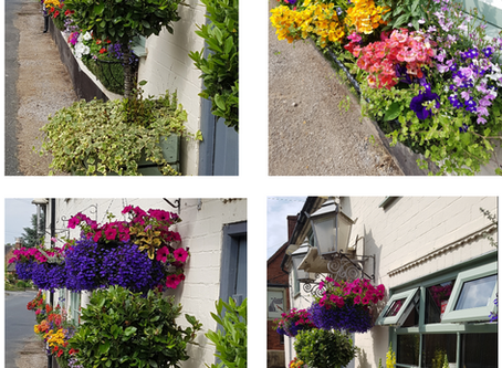 The Dog and Partridge is looking 'blooming' lovely!
