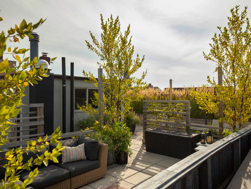 Behind the Design | A Shared Rooftop Garden Grows in Brooklyn
