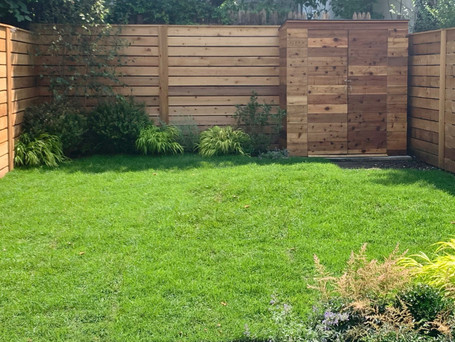 TIPS FOR A HEALTHIER AND MORE ECO-FRIENDLY LAWN
