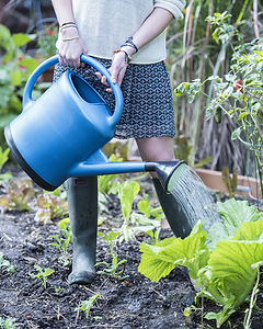 06341_1078_french-blue-plastic-watering-