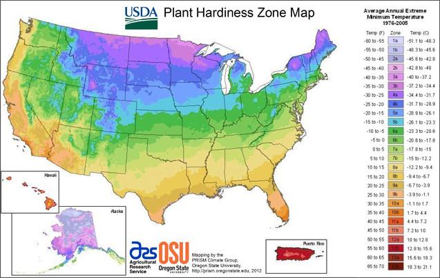 Plant hardiness zone map courtesy USDA.gov.