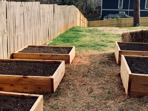 Building Your Own Raised Beds