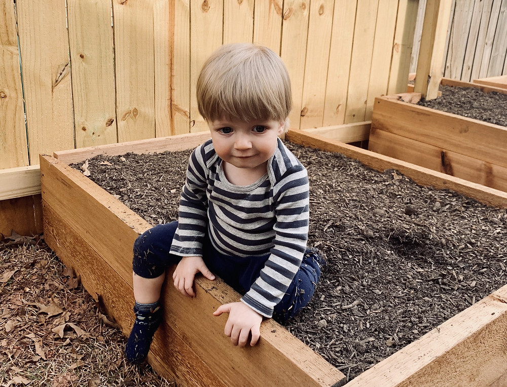Our toddler, Colt, tests out our newly built raised beds.