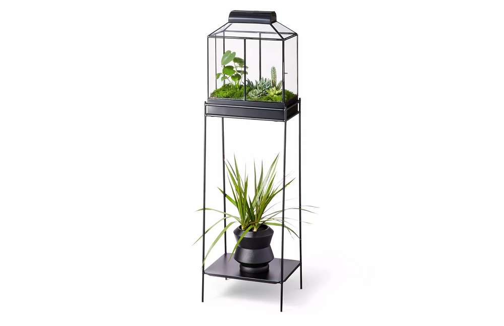 Iron/glass house planter and terrarium in black by Hilton Carter for Target.