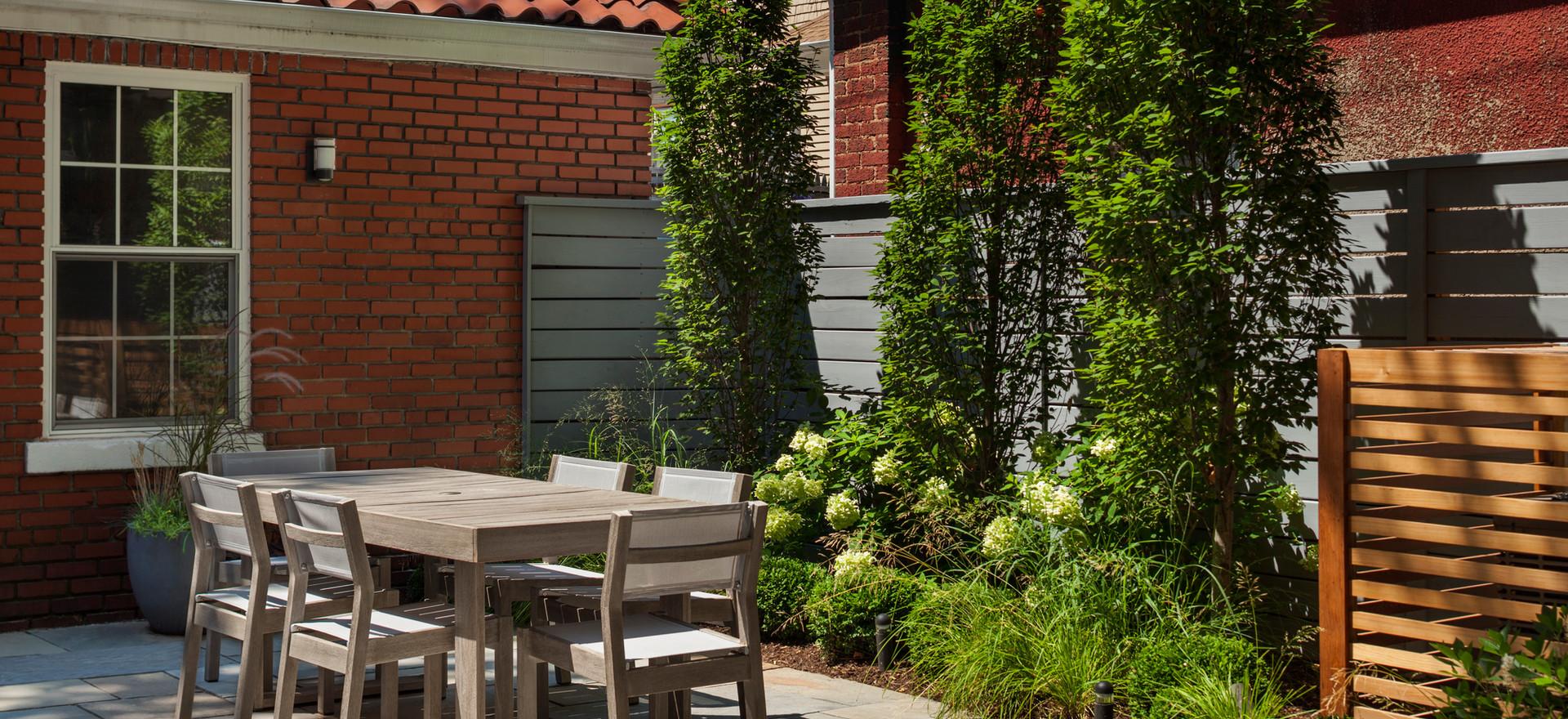 Staghorn NYC Modern Backyard Garden