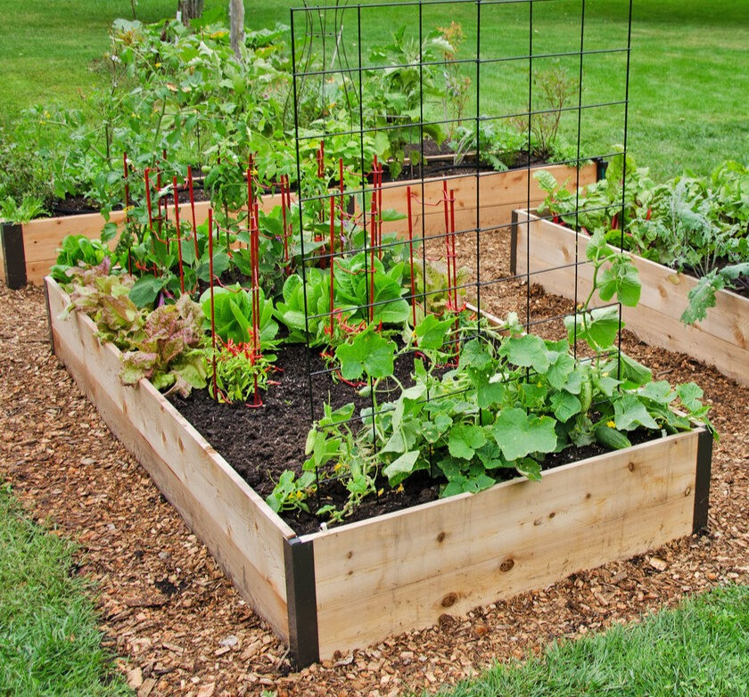 I love these cedar raised beds with metal corners. Image courtesy Gardener's Supply.