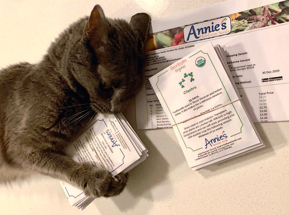 Sammy the cat closely examined our seeds upon arrival. We bought our veggie seeds from Annie's Heirlooms.