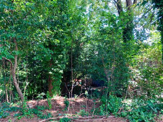 Introducing the Greenleaf Garden