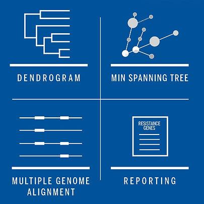 Dendro-MinSpan.jpg